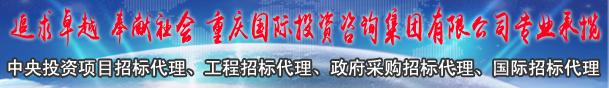 重庆国际投资咨询集团有限公司
